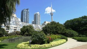 Tiff Light Box and Festival Tower (Festival Tower)_amenities7