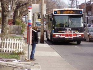 63 Ossington Bus