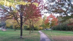 Alderidge-outdoor