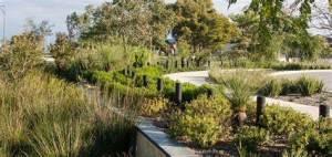 Heron Park-outdoor