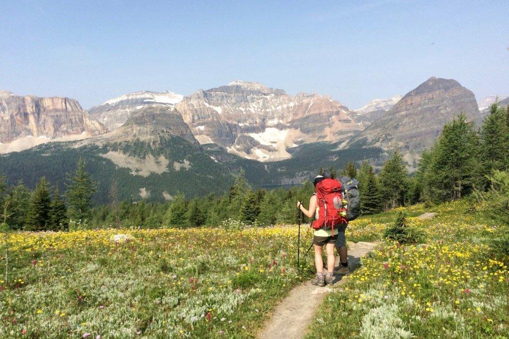 Banff Trail Park 1