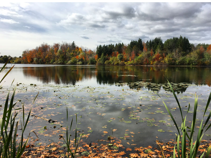 Heart Lake Conservation Area