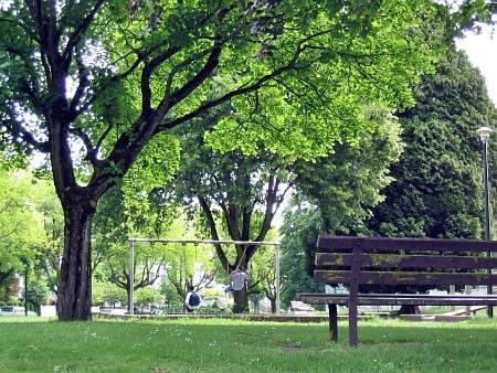 MacDonald Park-min