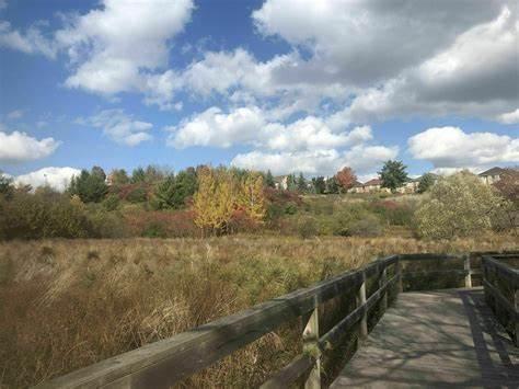 Rothbury Ravine Estates-outdoor