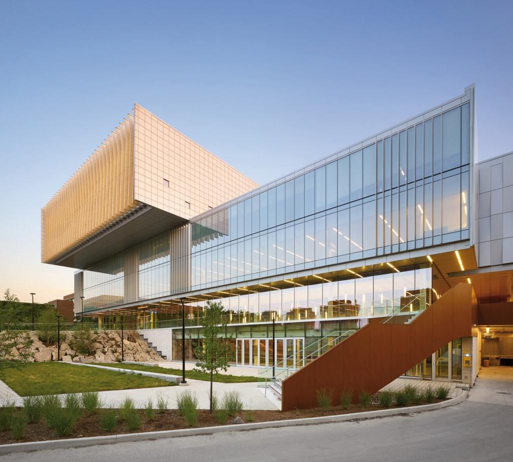 York University-min