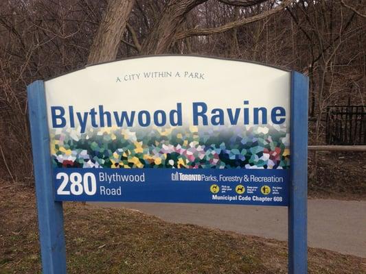 Blythwood Ravine Park-min
