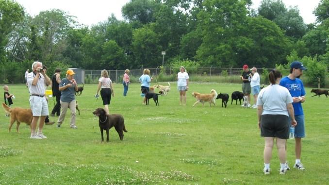 Cobourg Dog Park-min